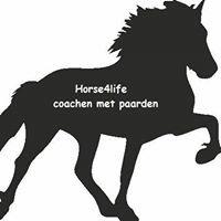 Horse4life coaching