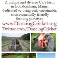 Dancing Cricket Farm