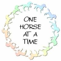 One Horse At A Time, Inc. Auction Items