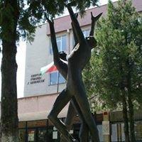 Спортно училище *Георги Бенковски* гр. Плевен