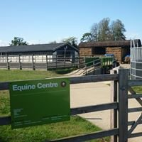 Equine Events At The Equine Centre: Common Leys Farm Campus, Witney, Oxon