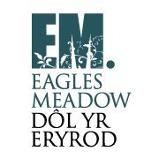 Eagles Meadow Shopping Centre