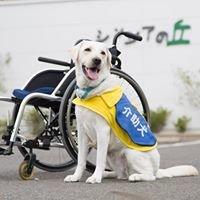 【日本介助犬協会】 介助犬総合訓練センター~シンシアの丘~