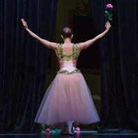 Ballettschule Bladin