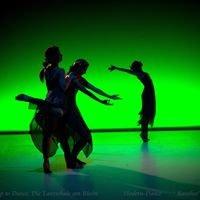 Up to dance, Die Tanzschule am Rhein