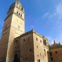 Ieronimus. Torres de la Catedral de Salamanca
