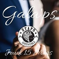 Bde Staps Grenoble