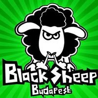 BlackSheep Hostel & Bar