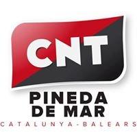 Confederació Nacional del Treball  CNT  Pineda de Mar