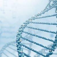 Bioinformatika na UK v Praze