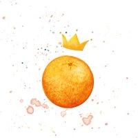 The Prince of Orange