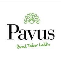 PAVUS - Grad Tabor Laško