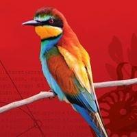 Biodiverziteta Varstvo narave // Biodiversity Nature Conservation