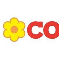 Supermercato CONAD Molicciara