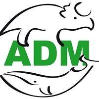 ADM - Genova