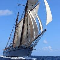 Irene, Sailing Ketch. 1907
