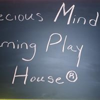Precious Minds Learning Play House