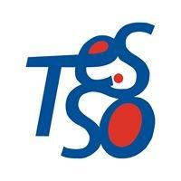 Associazione TeSSo