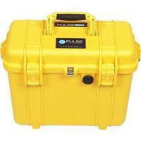 LifePulse PEMF For Horses, People and Dogs