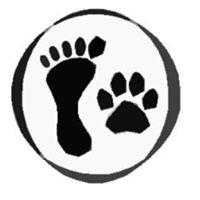 Dog Walking Lima
