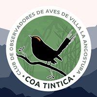 Club de Observadores de Aves de Villa La Angostura (COA Tintica)