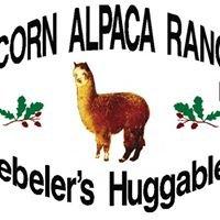 Acorn Alpaca Ranch