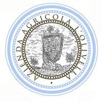 Azienda Agricola L'Olivella