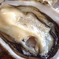 Nautilus Seafood Ostricheria,Molluscheria,Crostaceria.
