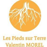 Les pieds sur terre - Valentin Morel