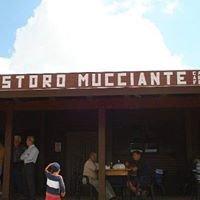 Ristoro Mucciante