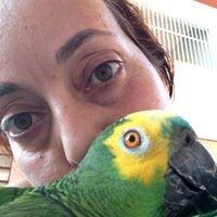Clínica de Aves - Angélika Sharom