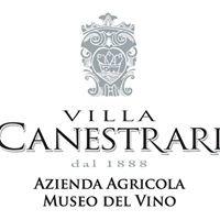 Villa Canestrari - Museo del Vino