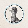 Birdie Алматы