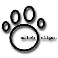 Mitch Clips Management