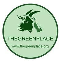 Thegreenplace