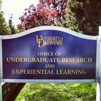 UD Undergraduate Research Program