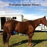 Thompson Quarter Horses