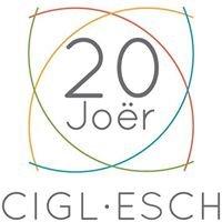 CIGL Esch :: page