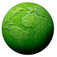 Прекрасное Зелёное