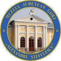 """Muzeul Judetean Gorj """"Alexandru Stefulescu"""""""