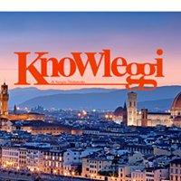 Car Rental Knowleggi