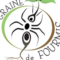 Graine De Fourmis ECO FERME