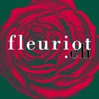 FLEURIOT FLEURS