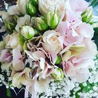 Traut Ihr Euch - Die Hochzeits- & Veranstaltungsorganisation