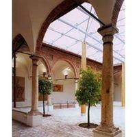 Museo Civico e Diocesano  di Montalcino. Raccolta Archeologica