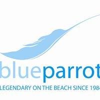 Blueparrothotels