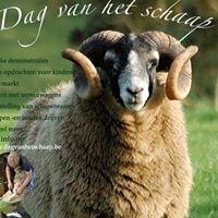 Dag van het schaap