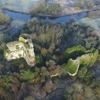 Lea Castle Conservation Project