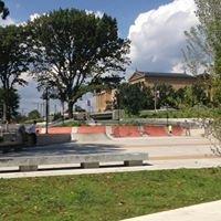 Paine's Park - Skate Park
