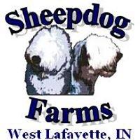Sheepdog Farms